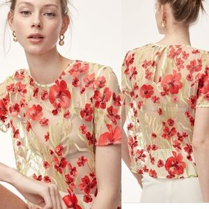 Aritzia little moon sheer embroidery floral top